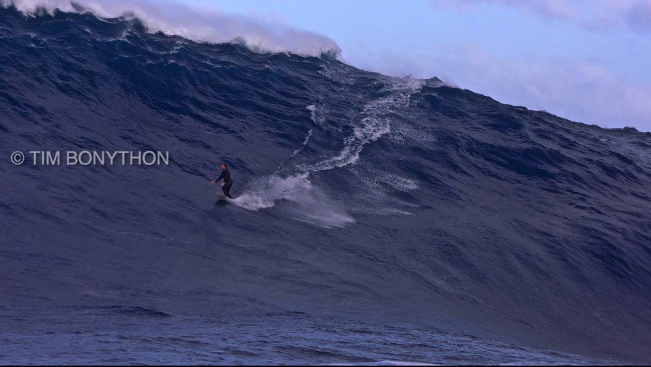 footagecapture©timbonython
